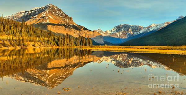 Photograph - Mt Chephren Golden Reflections Crop by Adam Jewell