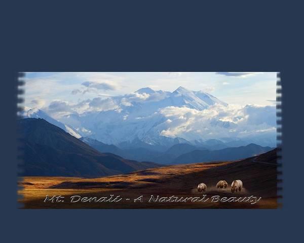 Photograph - Mt. Denali National Park by Ann Lauwers