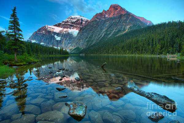 Photograph - Mt Edith Cavell Glowing Sunrise Peaks by Adam Jewell