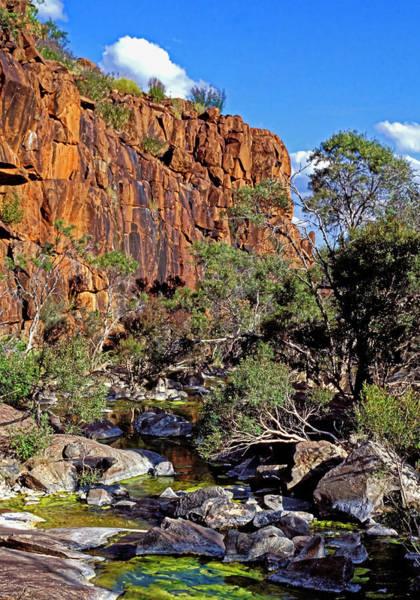Photograph - Mt Hay Creek - Central Australia by Steven Ralser