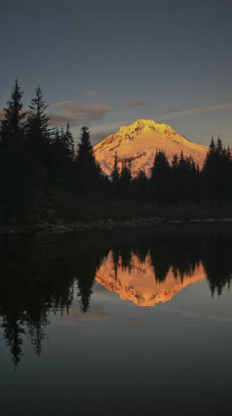 Photograph - Mt Hood Alpenglow II by Albert Seger