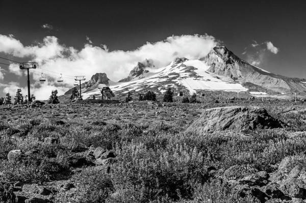 Wall Art - Photograph - Mt Hood And Lupines From Pacific Crest Trail Monochrome by John Trax