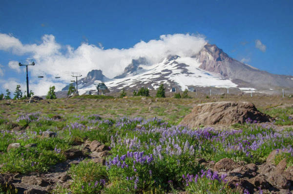 Wall Art - Photograph - Mt Hood And Lupines From Pacific Crest Trail Painterly by John Trax