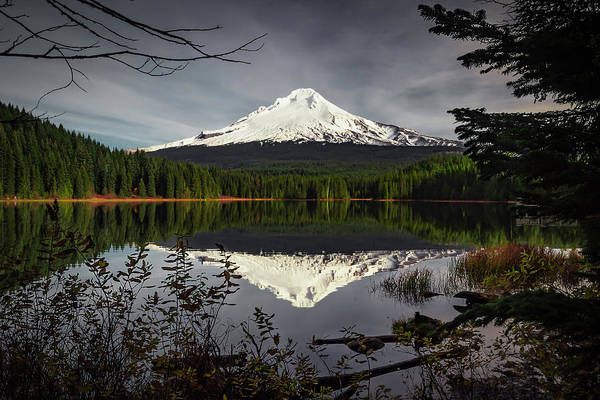 Photograph - Mt Hood Reflection by Hans Franchesco