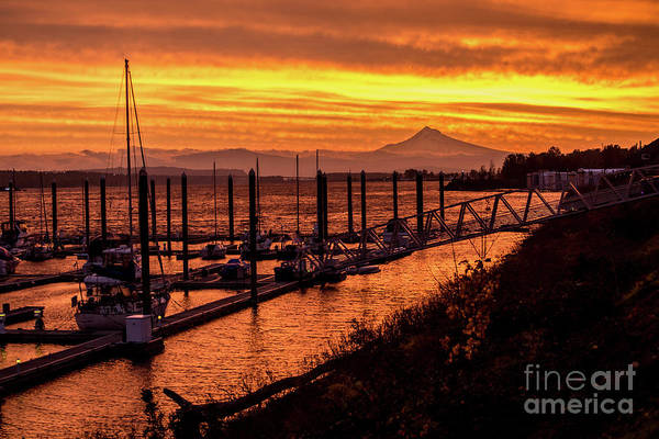 Photograph - Mt Hood Sunrise - Portland - Oregon by Gary Whitton