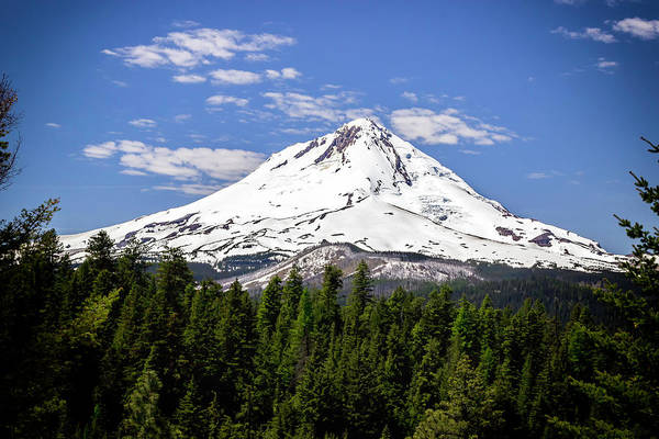 Photograph - Mt. Hood's East Face by Hans Franchesco