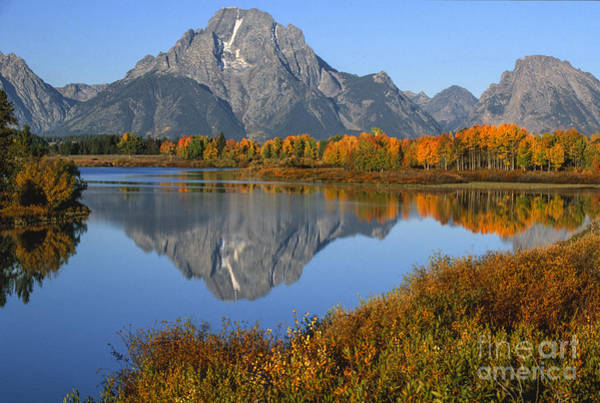 Oxbow Park Photograph - Mt. Moran Fall Reflection  by Sandra Bronstein
