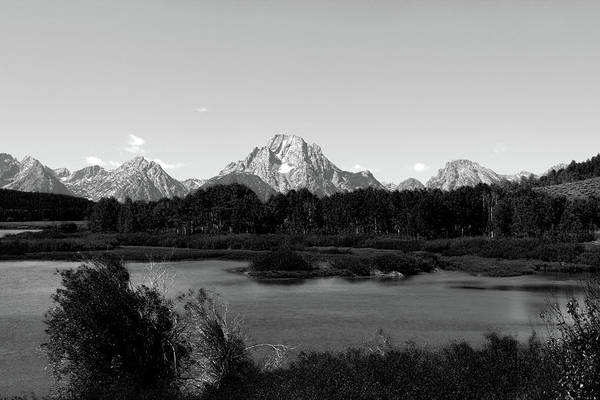 Photograph - Mt Moran From The Oxbow Bend by Aidan Moran