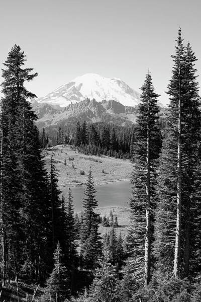 Photograph - Mt Rainier From Chinook Pass by David Patterson