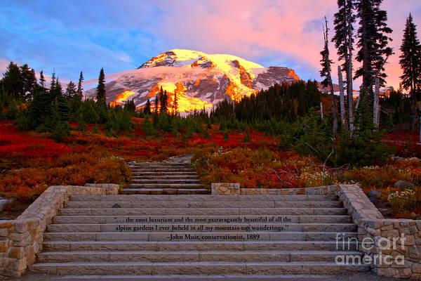 Photograph - Mt Rainier Morning Glow by Adam Jewell