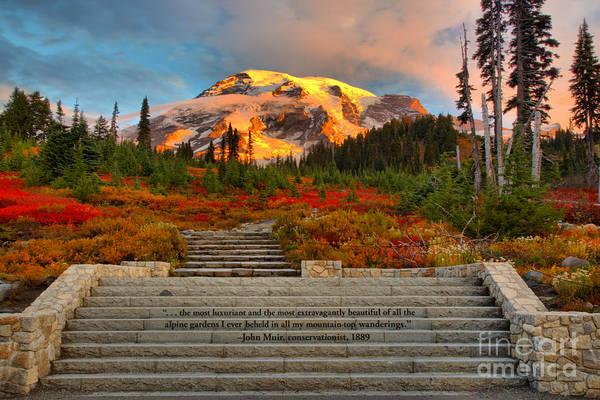 Photograph - Mt Rainier Sunkiss by Adam Jewell