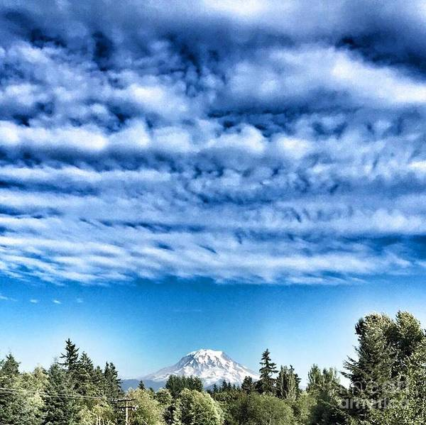 Photograph - Mt Rainier by Vennie Kocsis