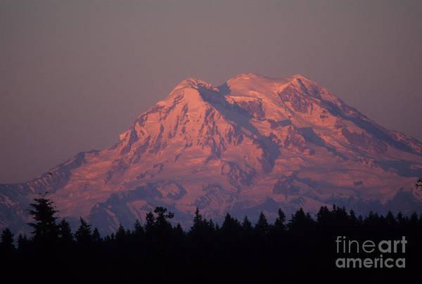 Mt Rainier Photograph - Mt. Rainier Washington by Robert Torkomian