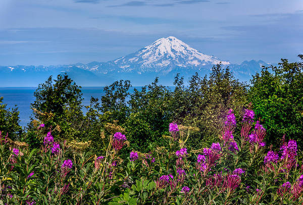 Photograph - Mt. Redoubt by Claudia Abbott