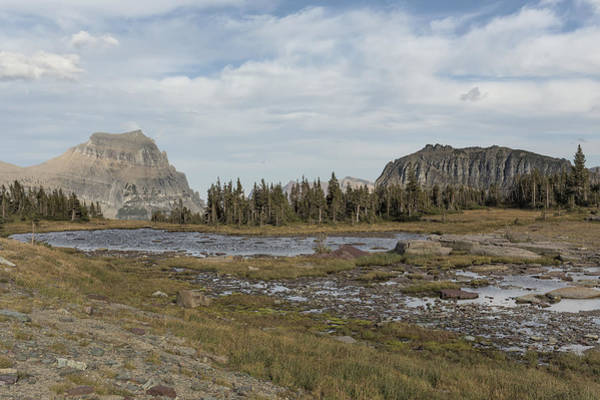 Photograph - Mt Reynolds And Heavy Runner From Logans Pass - Glacier Np by Belinda Greb