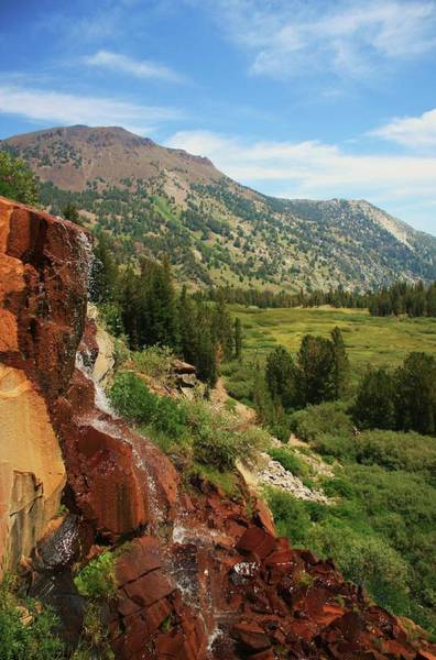 Photograph -  Mt Rose Back Country Waterfall by Sean Sarsfield