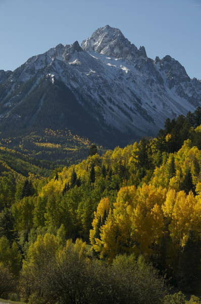 Photograph - Mt. Sneffels Fall Vertical  by Aaron Spong