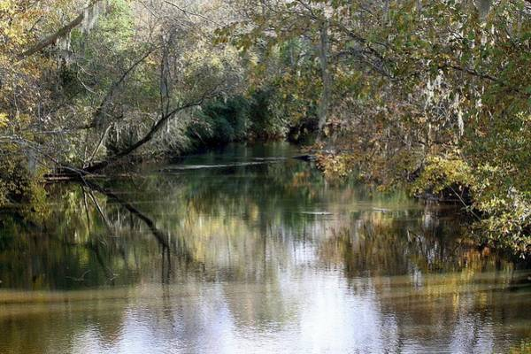 Photograph - Muckalee Creek by Jerry Battle