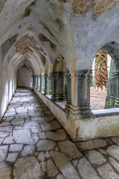 Gaelic Photograph - Muckross Abbey Cloister by W Chris Fooshee
