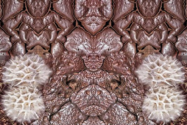 Digital Art - Mud Puffmen by Becky Titus