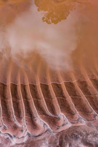 Photograph - Mud Reflections by Deborah Hughes