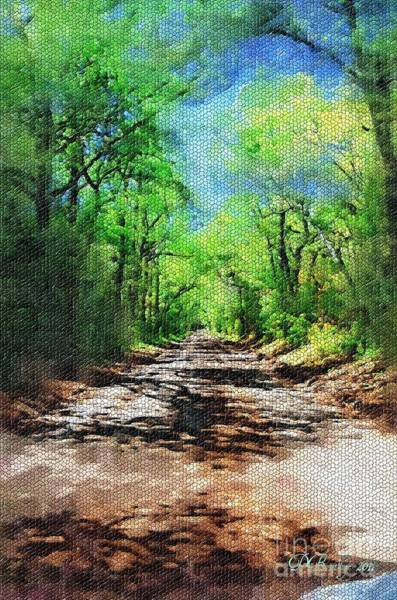 Photograph - Muddy Road Mosaic by Donna Bentley