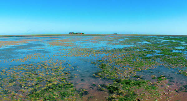Photograph - Mudflat Near Hooge by Sun Travels