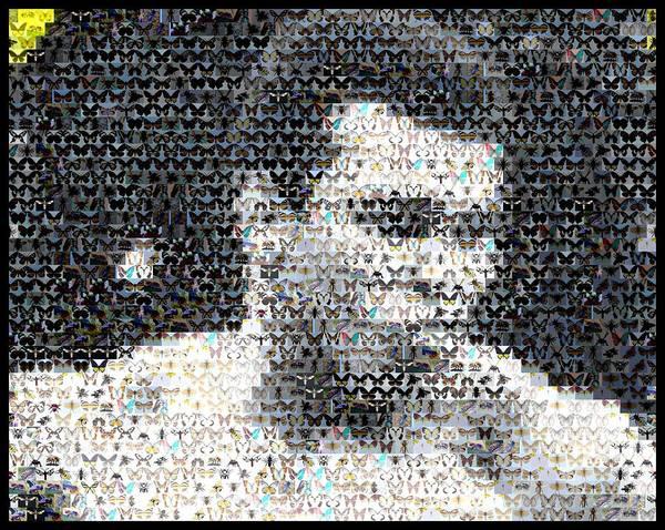 Boxing Mixed Media - Muhammad Ali Butterfly Bee Mosaic by Paul Van Scott