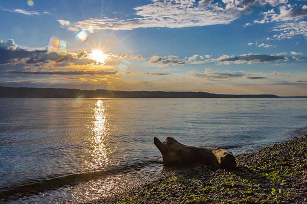 Photograph - Mukilteo Beach by Ed Clark