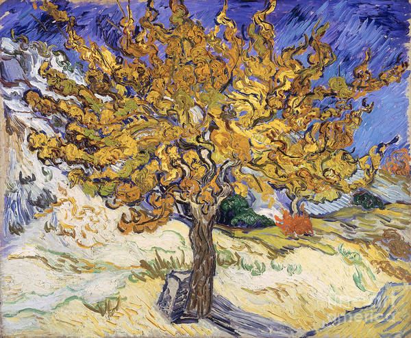 Vincent Van Gogh Painting - Mulberry Tree by Vincent Van Gogh