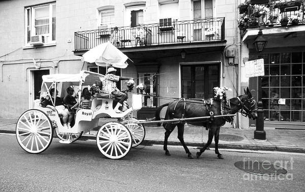 Photograph - Mule And Buggy French Quarter New Orleans by Thomas R Fletcher