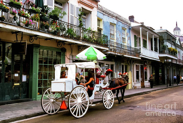 Photograph - Mule And Buggy French Quarter by Thomas R Fletcher