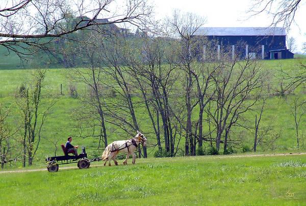 Photograph - Mule Practice One by Sam Davis Johnson