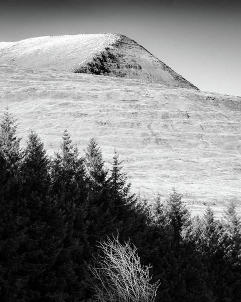 Photograph - Mull Trees And Peak by Dave Bowman