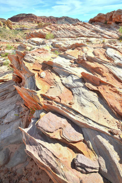 Photograph - Multicolored Crest Of Sandstone In Valley Of Fire by Ray Mathis