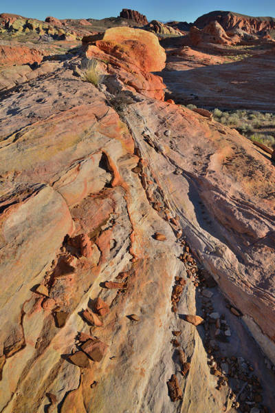 Photograph - Multicolored Sandstone Waves In Valley Of Fire by Ray Mathis