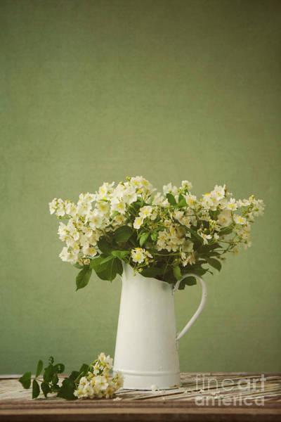 Laurel Wall Art - Photograph - Multiflora Rose In A Rustic Vase by Diane Diederich