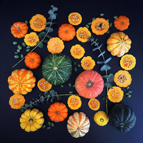 Photograph - Multiple Squash by Sarah Phillips