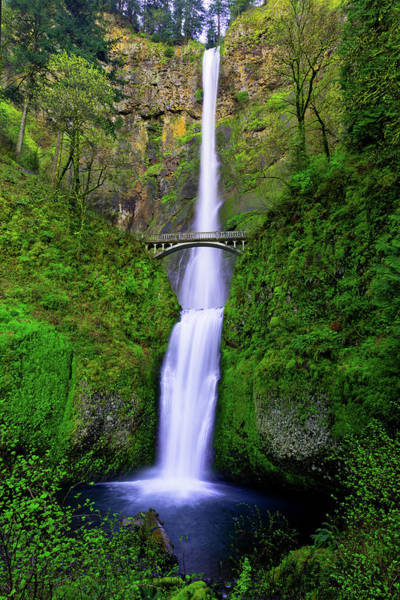 Wall Art - Photograph - Multnomah Dream by Chad Dutson