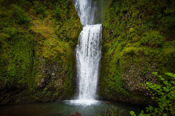 Photograph - Multnomah Falls #2 by Harry Spitz