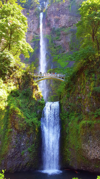 Wall Art - Photograph - Multnomah Falls by Art Spectrum
