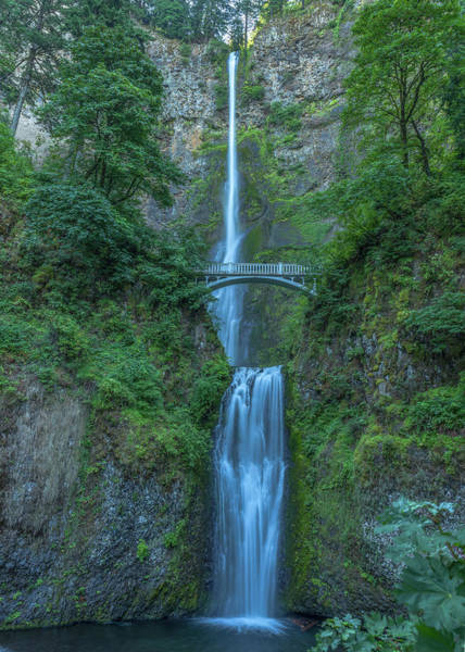 Photograph - Multnomah Falls by Brenda Jacobs