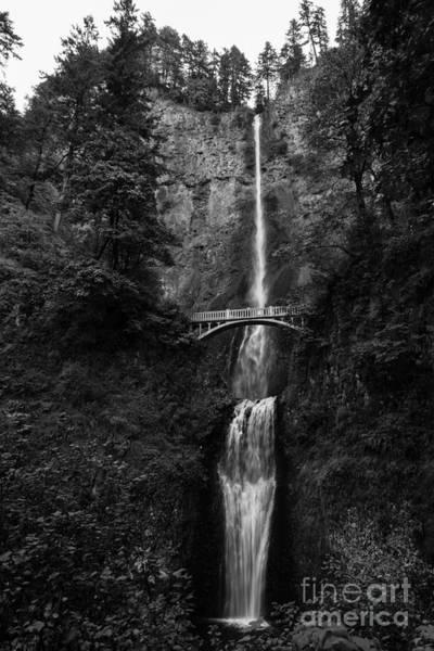 Photograph - Multnomah Falls B W by Jon Burch Photography