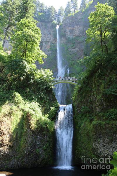 Photograph - Multnomah Falls by Carol Groenen