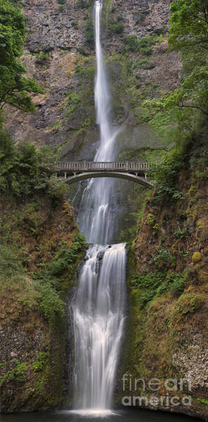 Wall Art - Photograph - Multnomah Falls - Columbia River Gorge by Sandra Bronstein