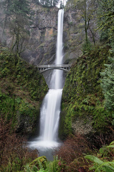 Photograph - Multnomah Falls by Harold Coleman