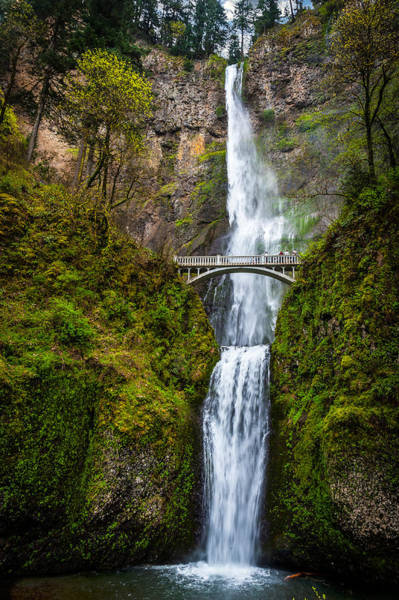 Photograph - Multnomah Falls by Harry Spitz