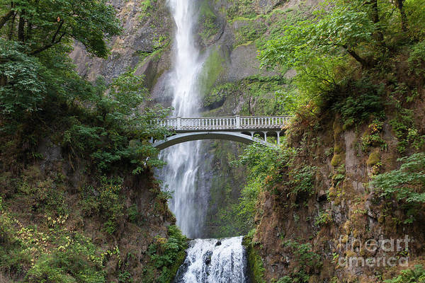 Photograph - Multnomah Falls In The Columbia River Gorge In Oregon 5d3547 by Wingsdomain Art and Photography
