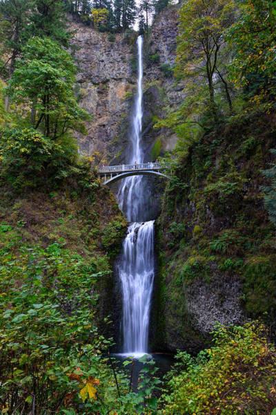 Photograph - Multnomah Falls by Mark Whitt