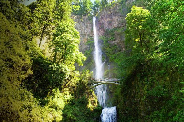 Wall Art - Photograph - Multnomah Falls, Oregon  by Art Spectrum